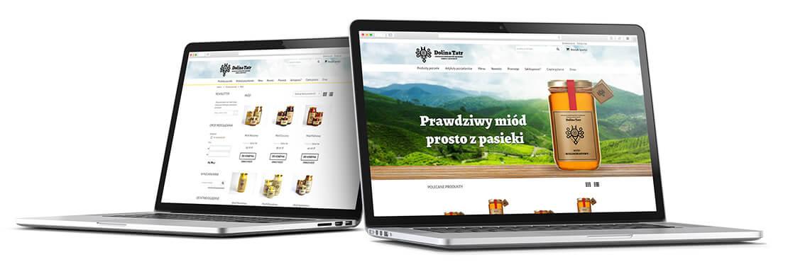 Strona internetowa Dolina Tatr