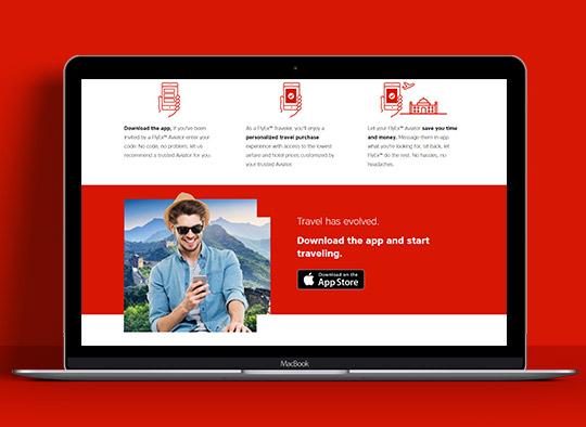 Strona internetowa Flyex