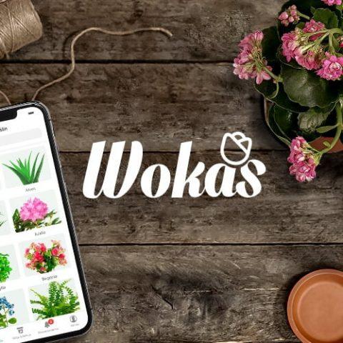 Wokas – mobile app