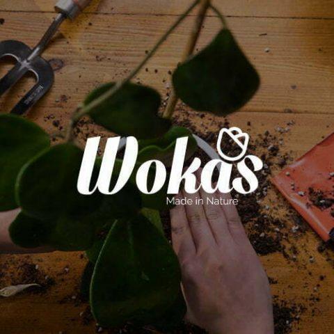 Wokas – Spot